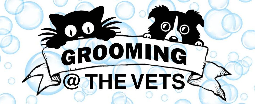 GROOMING @ THE VETS – Opens the door with all new purpose-built facilities.